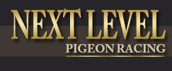 Logo Next Level Pigeon Racing